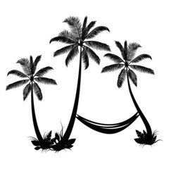 Palm trees with hammock isolated on white background