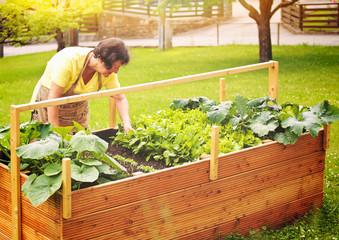 elderly woman working in her garden-gardening 03