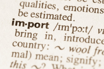 Dictionary definition of word import
