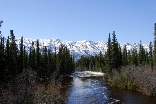 Wild Alaskan river