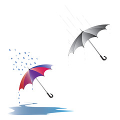 men's and women's umbrellas