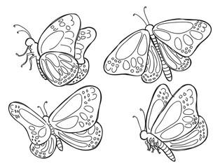 cute butterflies doodle