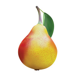 Realistic ripe yellow pear on a white background