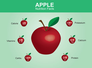 apple nutrition facts, apple fruit with information, apple vector