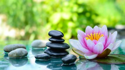 Spa wellness blumen  Bilder und Videos suchen: massagesteine