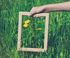 Hand holding a wooden frame on flower background. Care, safety,