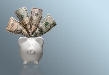 Piggy Bank, Savings, Currency.