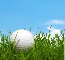 Golf, Grass, Golf Ball.