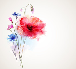 Floral bouquet with poppy and cornflowers