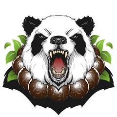 Angry panda head