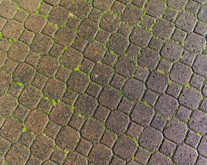 Patterned pathway of paver stones