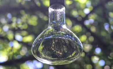 A big light bulb in the garden