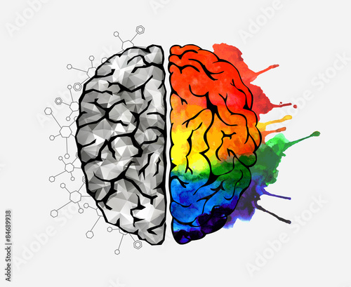 reaction paper abuot human brain At least 100,000 different chemical reactions occur in the normal human brain every second.