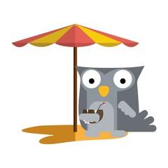 Cute owl sticker ser