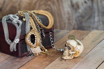 Still Life skull and small box with treasures on wooden