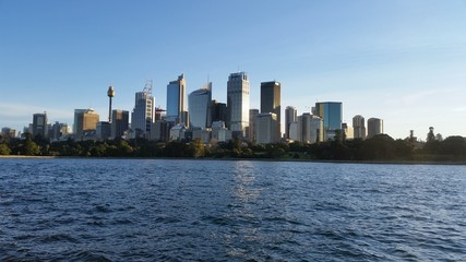 Fototapete - Sydney city from Mrs Macquarie Point, Sydney, Australia