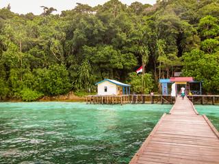 Cabin on a tropical island