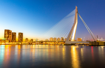 Photo Blinds Swan Erasmus bridge Rotterdam