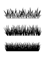 background of grass in black and white