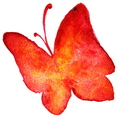 Red and yellow butterfly isolated