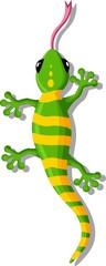 Cartoon gecko for you design