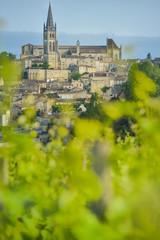 Vineyard and village of Saint-Emilion