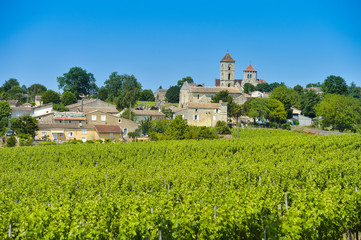 Vineyard and village of Montagne Saint-Emilion