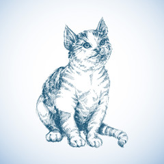 Cute cat sketch