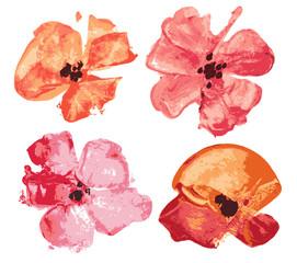 Watercolor flowers set, design elements