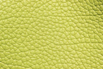 Close up  leather texture