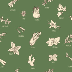 Seamless pattern with hand-drawn spices
