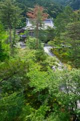 南禅寺 新緑