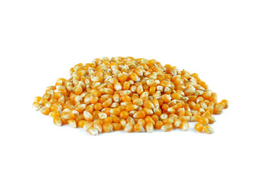 Dried corn on white background