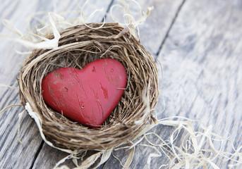 cœur amoureux protection d'un nid
