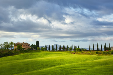 Photo sur Toile Colline Lighting game on green tuscany hills