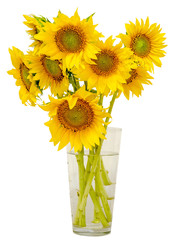 Yellow sunflowers in a transparent vase