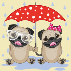 Two Dogs with umbrella