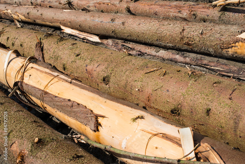 Timber Harvesting Pile Of Cut Fir Logs Stock Photo And Royalty