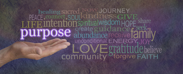 What is Life's Purpose - male hand open palm upwards with the word Purpose floating above surrounded by a multicolored word cloud on a wide stone effect background
