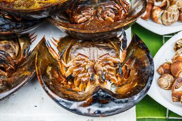horseshoe crab