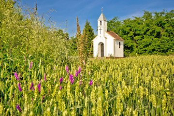 Catholic chapel in rural agricultural landscape Wall mural