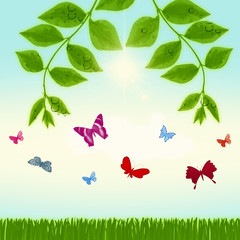 Green leaf natural background