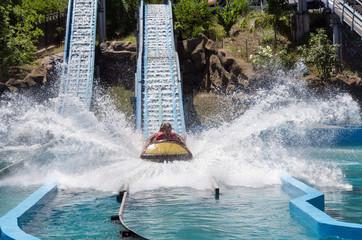 Foto op Aluminium Amusementspark Water game in a hollowed trunk at an amusement park