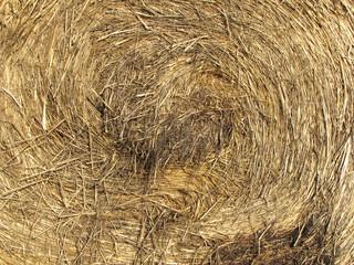 Detail of bale of hay