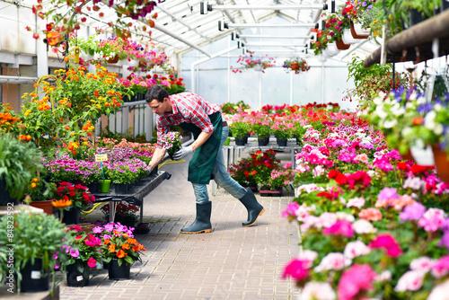 G Rtnerei In Einem Gew Chshaus F R Blumen Stockfotos Und