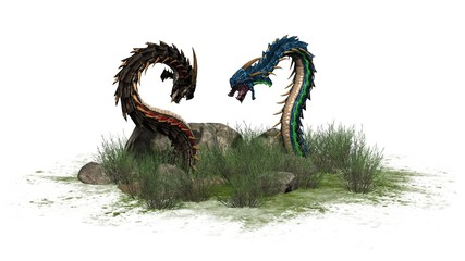 Dragon worms on white background
