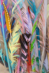 Foto op Canvas Paradijsvogel Colored Feathers on Sackcloth