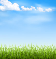 Green grass lawn with clouds on blue sky