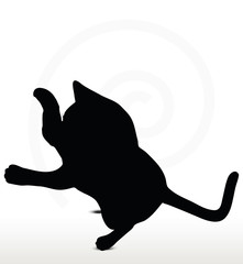 cat silhouette in Boxing pose