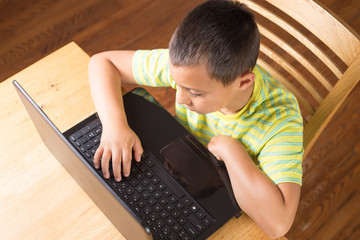 Young boy playin on computer.